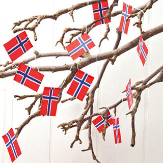 Cotton Flag Garland - Norway